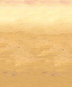 Desert Sand Plastic Backdrop