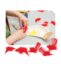 Red Craft Feathers