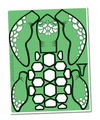 Preschool Turtle Craft Pieces