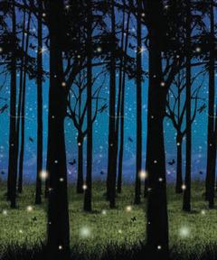 Twilight Forest Plastic Backdrop